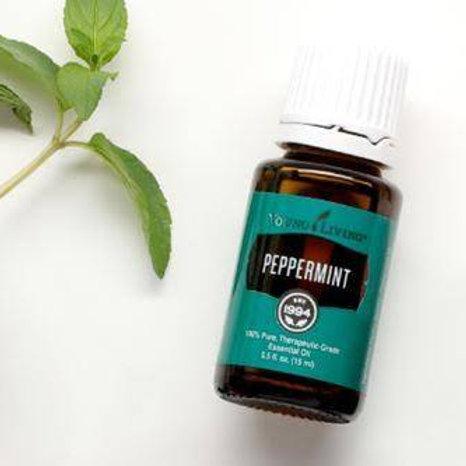 YL Peppermint 15 ml