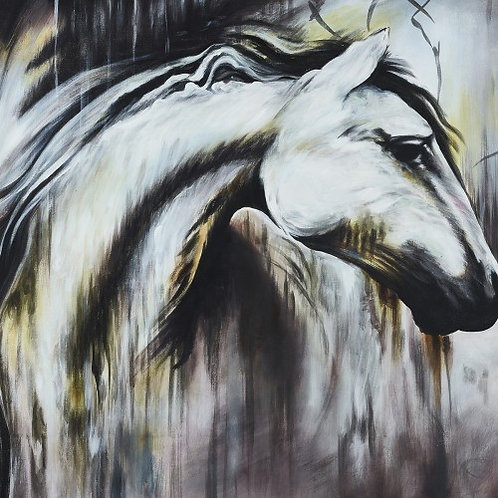 Canvas 50x40