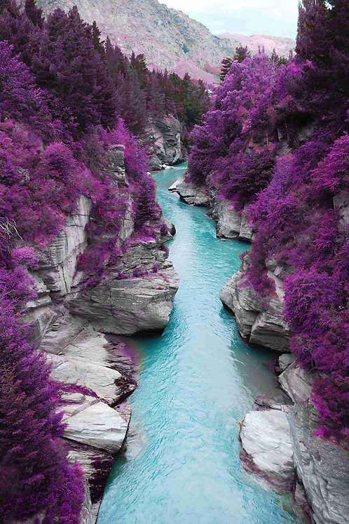 River with purple trees tempered glass