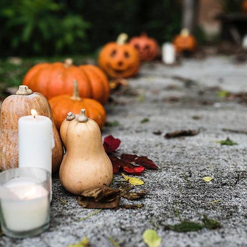 Autumn & Halloween Wax Sampler