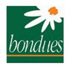 ville de Bondues.jpg