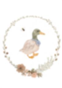 EnclosedWreaths_Duck.png