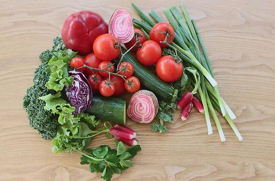 Nutritional Therapy Sofia Dahlgren