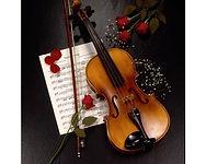 Violino.jpg