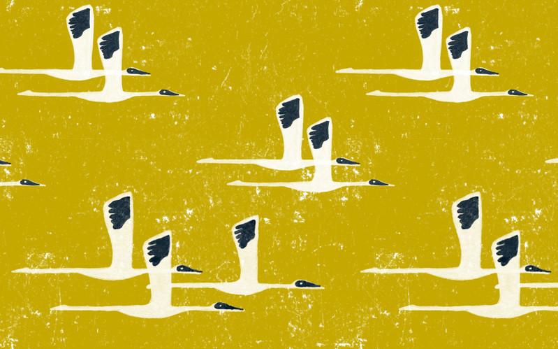 Siberian Cranes in Gold