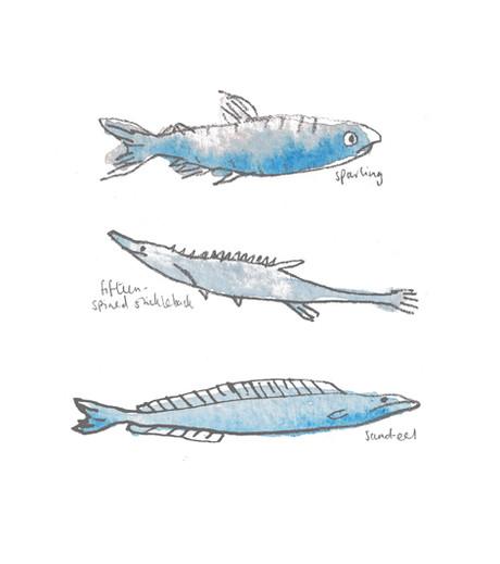 THREE LITTLE FISH