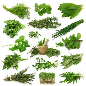Collection des herbes