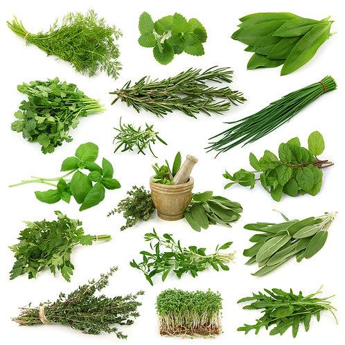 Medicinal Herbal Blends - 1 oz