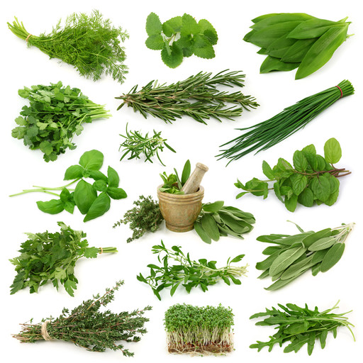 Your Go-To Guide: the Healing Benefits of 41 Herbs & Spices