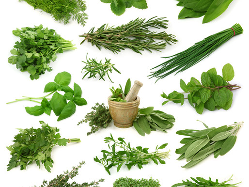 Fresh Herb Frittata
