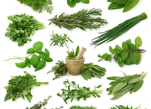 Packet Herbs Sage (per item)