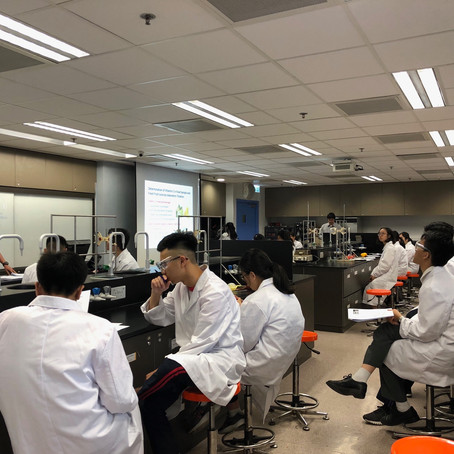 Summer Laboratory Workshops on Chemical Testing