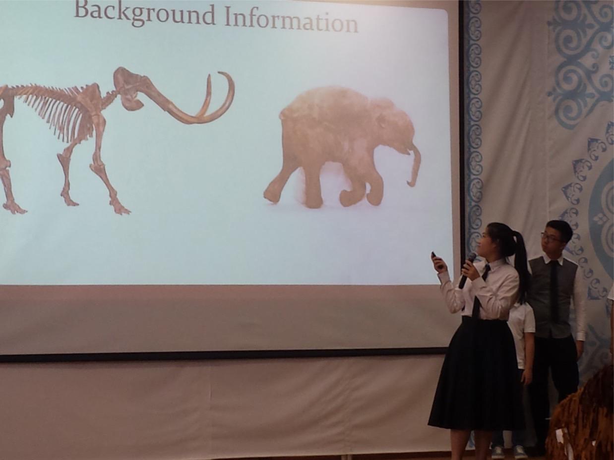 Presentation in International Research S