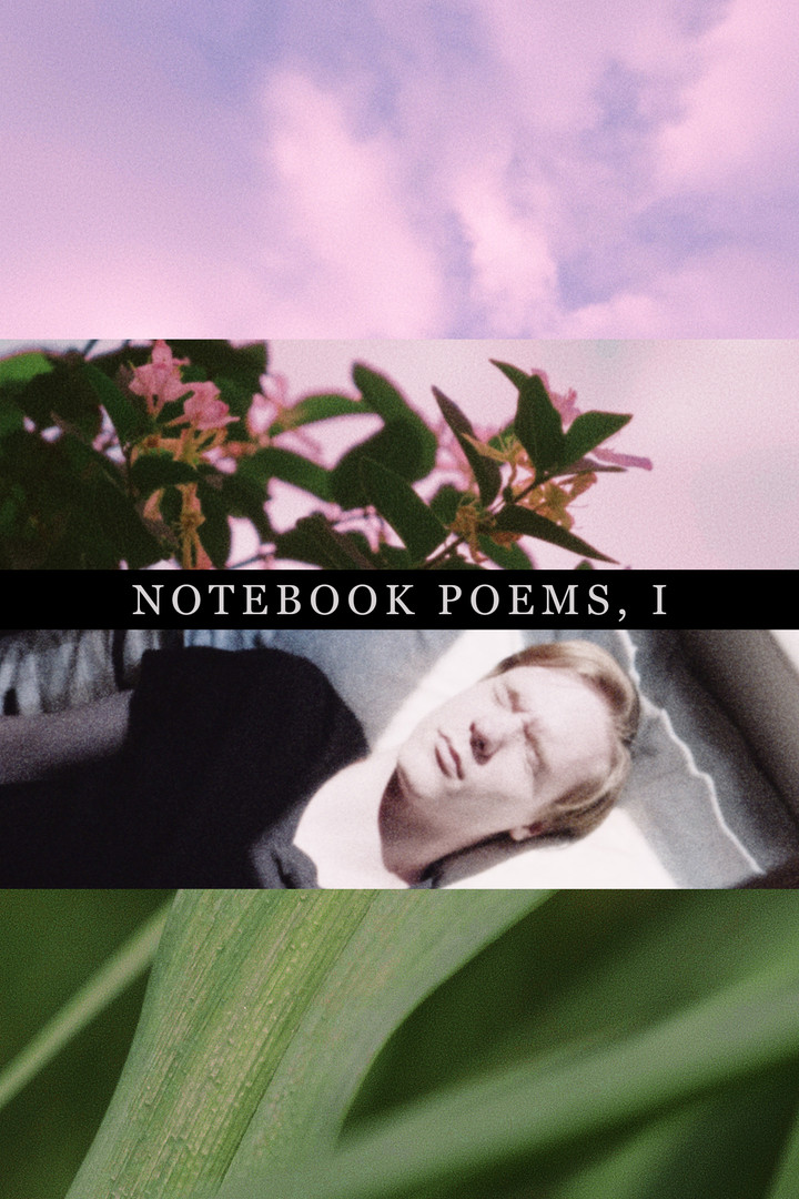 Notebook Poems, Vol. 1 (2020)