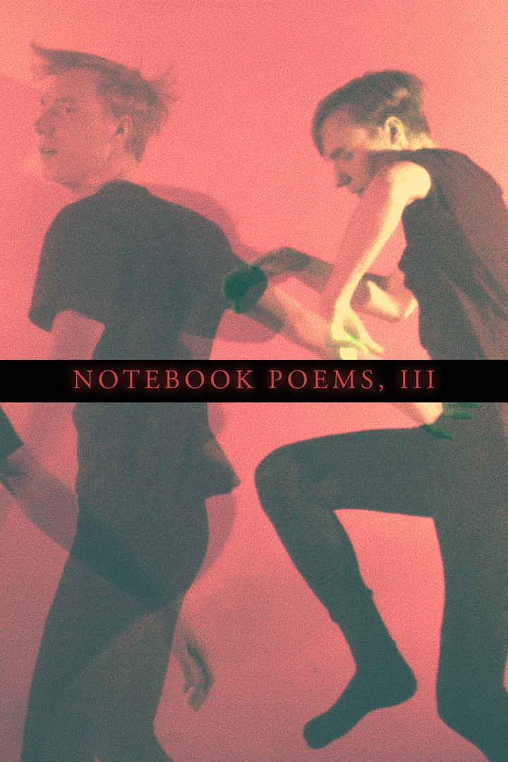 Notebook Poems, Vol. 3 (2020)