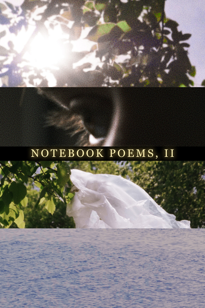Notebook Poems, Vol. 2 (2020)