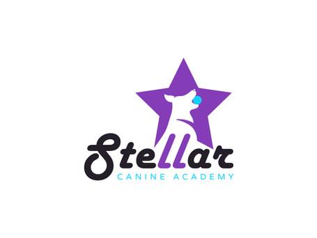 59296_Stellar Canine Academy_AT_03.jpg