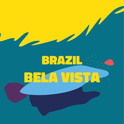 Bela Vista - Brazil