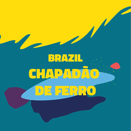 Chapadão de Ferro - Brazil