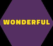 WONDERFUK.png