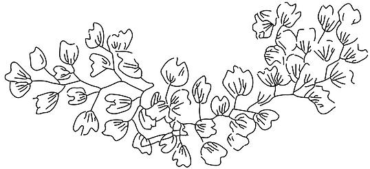 Schermafbeelding 2020-02-23 om 13.03.47.