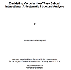2015 - MSc Orthodontics - Thesis - Systematic Structural Analysis