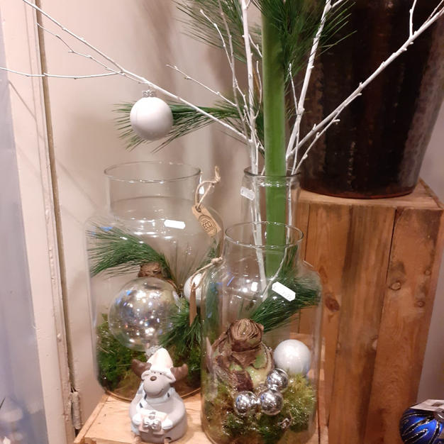 Ammaryllis in glas