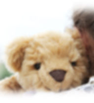 The-Comfort-Cub-Hug.jpg