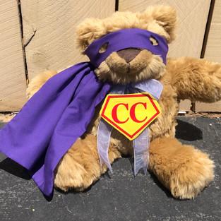 Super Comfort Cub | My Feelings Book!