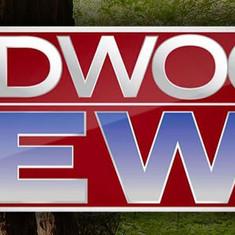 Redwood News (link below)