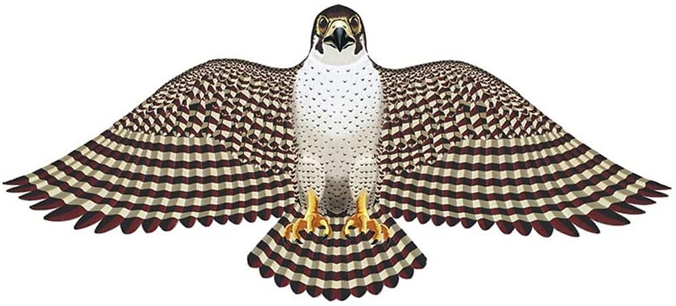 Wing Flappers Peregrine Falcon Kite