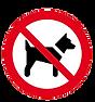 visuel chien clean.png