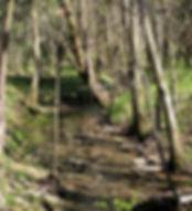 Culleoka Tennessee sweetwater creek