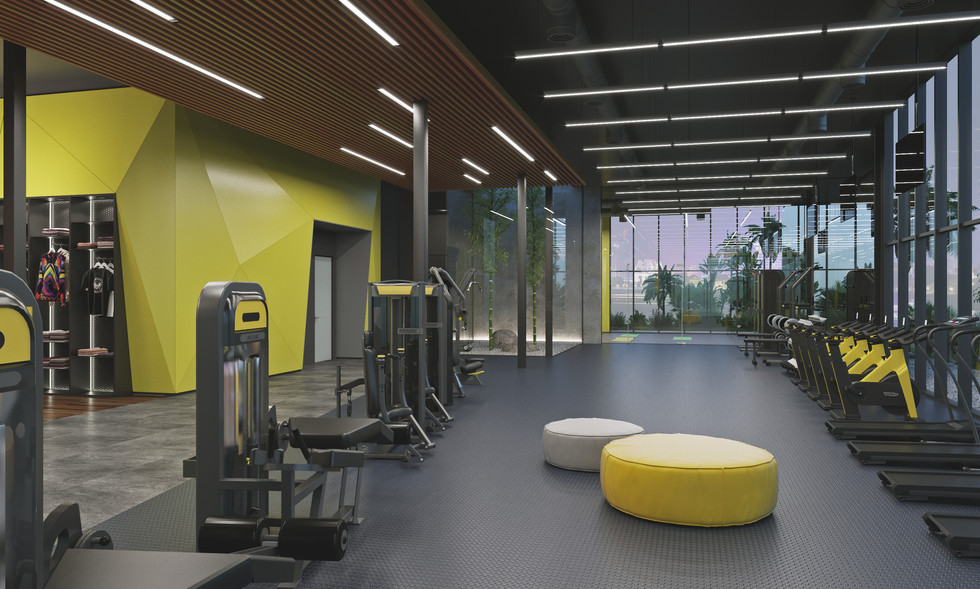 Rise Fitness - 1