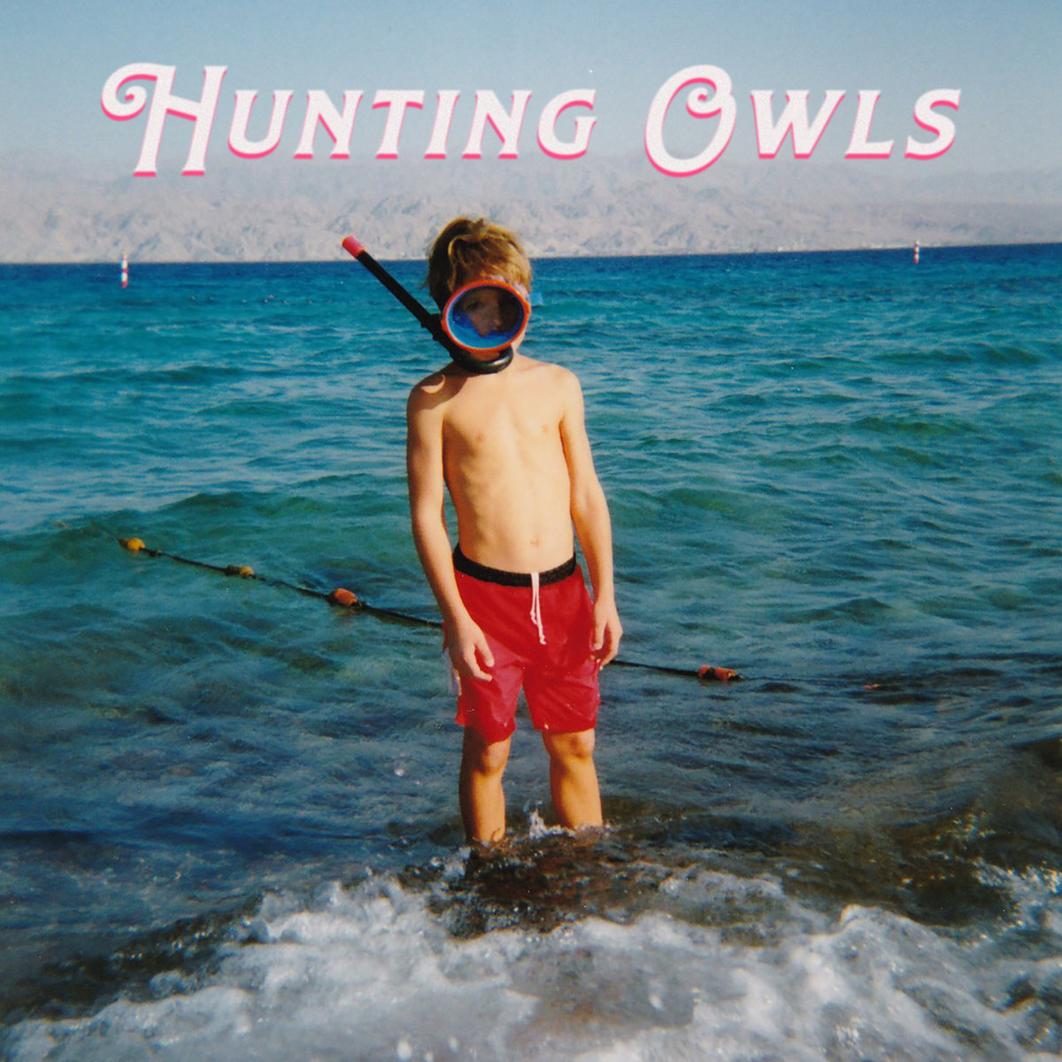 Hunting Owls