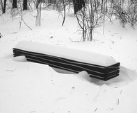 """""""The Wave Snow 01, Somewhere in the sow !!!"""" 2010, Canadian red Oak, concret base, 106 X 19.5 X 15.5 inch, 270 X 50 X 40 cm."""