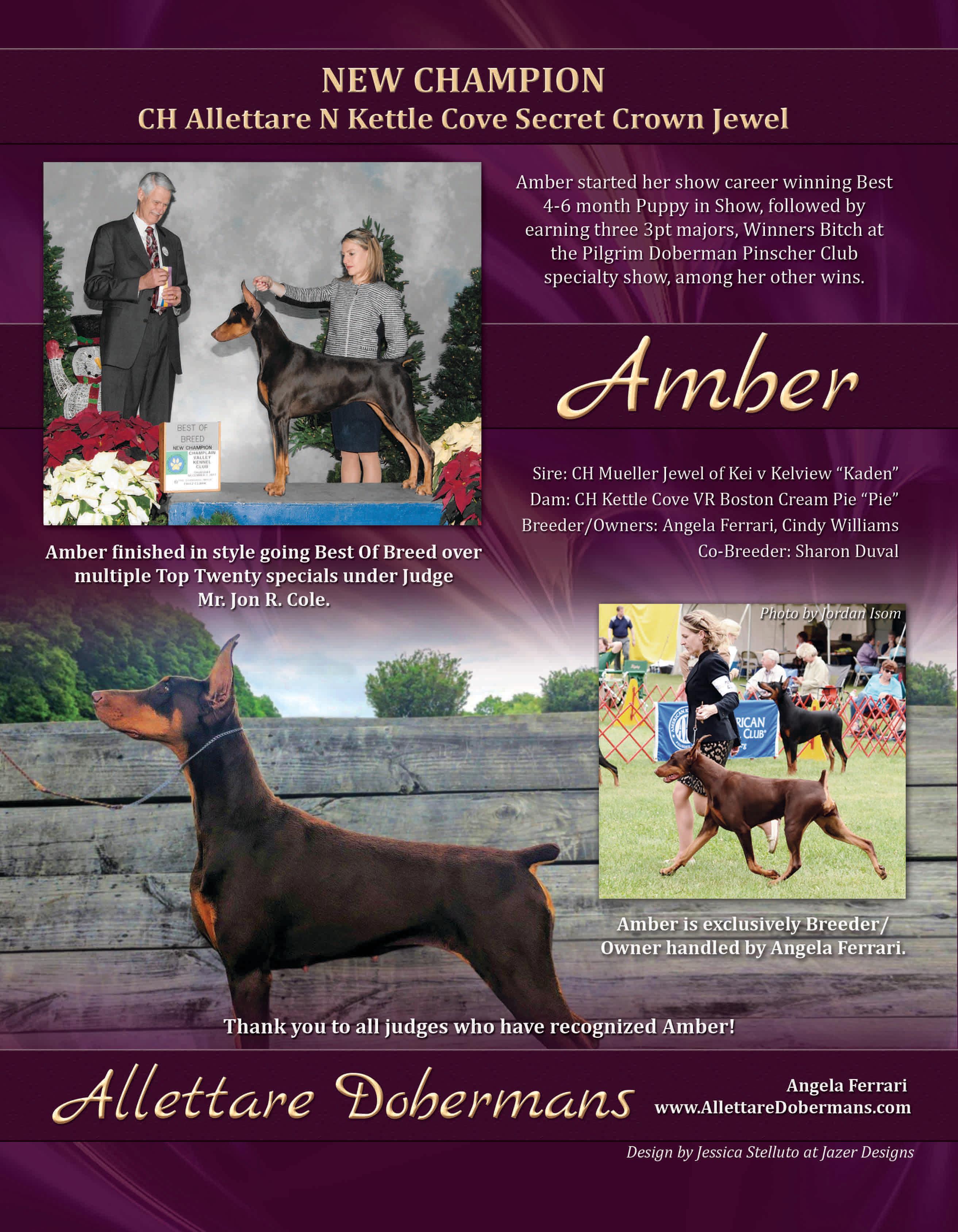 New Champion Amber