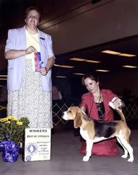 Wachusett Kennel Club