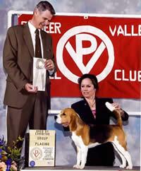 Pioneer Valley Kennel Club
