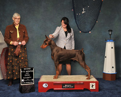 Tucker-2nd-9-12-futurity