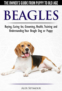 Beagle book cover small.jpg