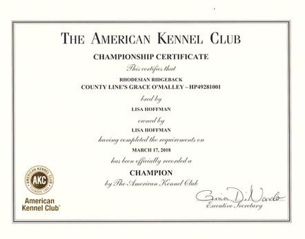 Ariel Championship Certificate