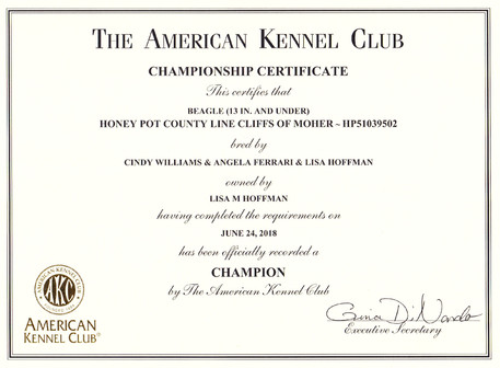 Keeva Championship Certificate