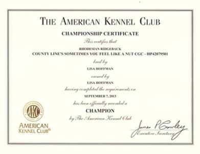 Hazelnut Championship Certificate