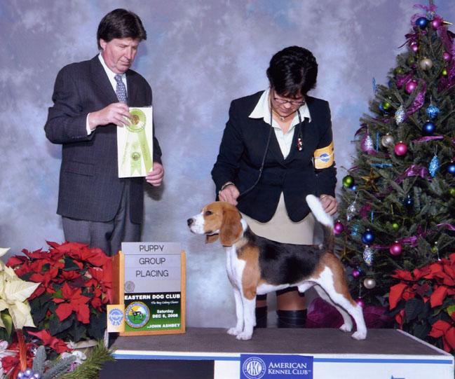 Eastern Dog Club - Dec. 6, 2008