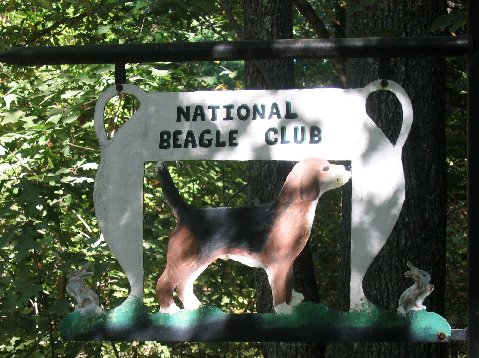 National Beagle Club Sign