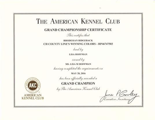 Cian Championship Certificate