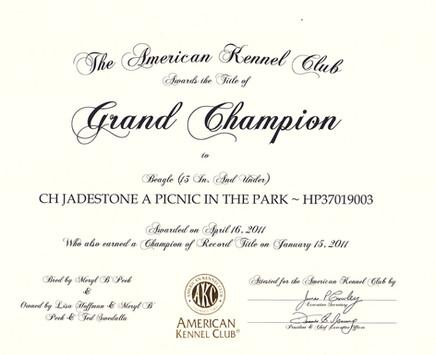 Sage Grand Championship Certificate