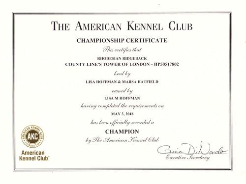 Beatrix Championship Certificate