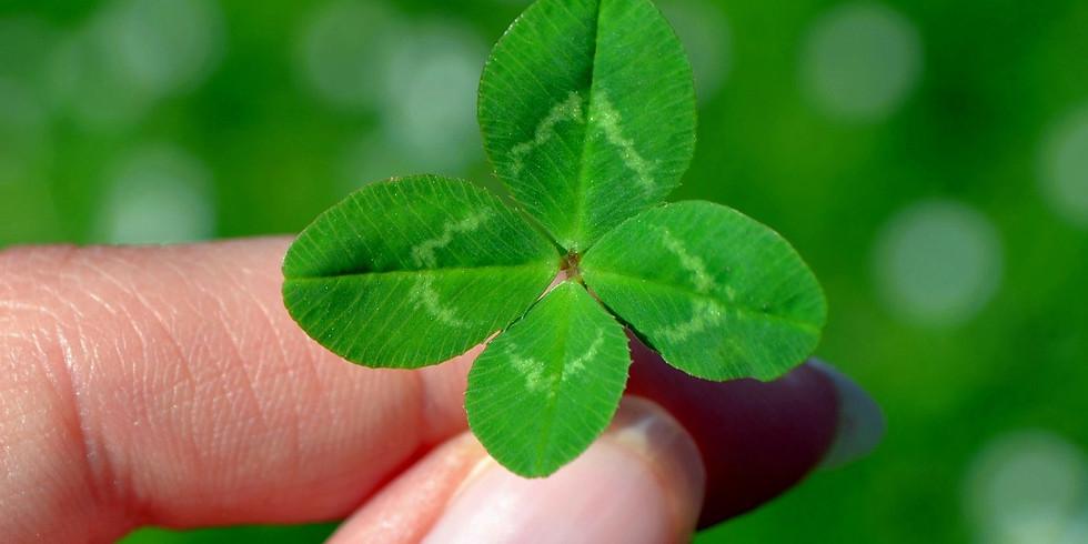 Cérémonie : Chance et Prosperité